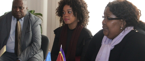 Delegation from Eswatini